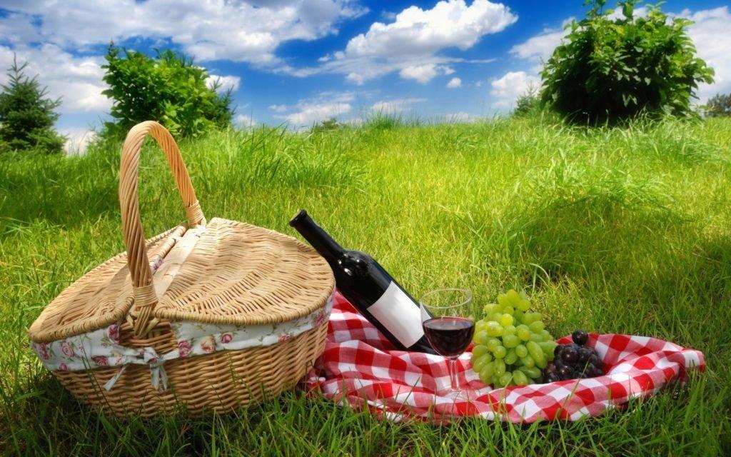 майские праздники, пикник