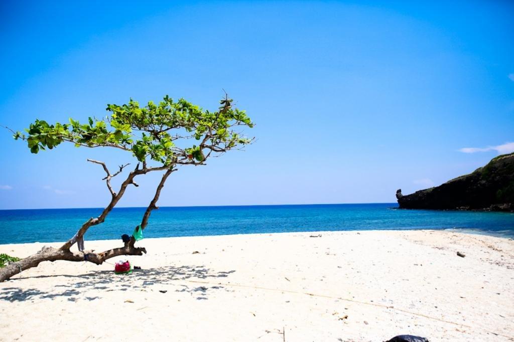 море пляж белый песок