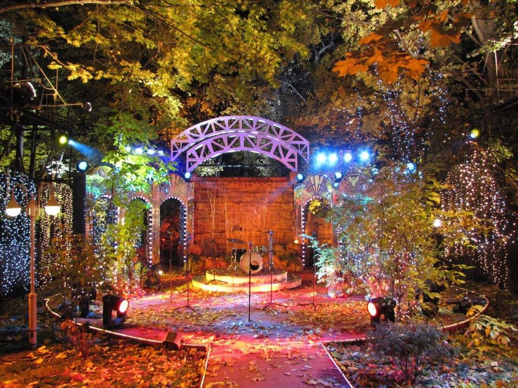 Нескучный сад ночью