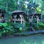 Как снять жилье на Бали?